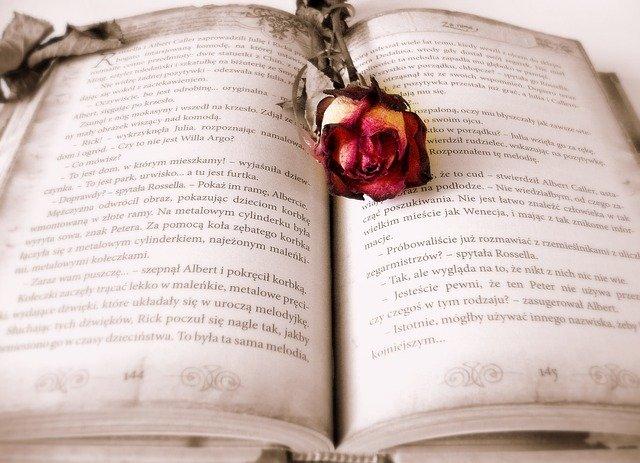 Propositions de roman d'amour à lire